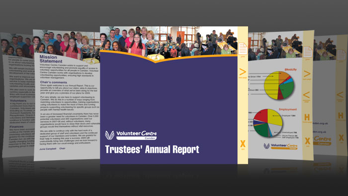 Camden volunteers annual report