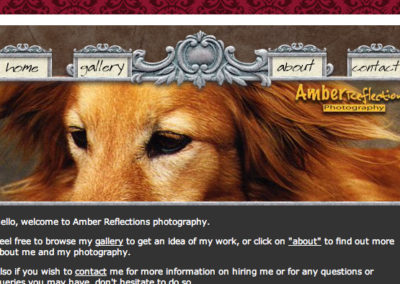 Amber Reflections Website